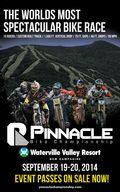 Pinnacle Poster