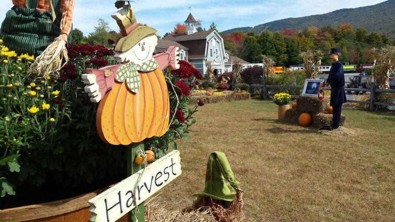 WMA Hobo Harvest