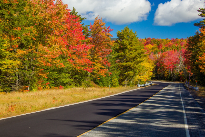 Fall-in-new-england-152966888926J