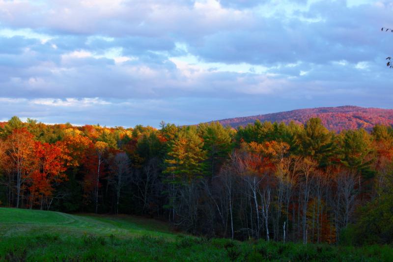 Fall_in_Hanover _NH