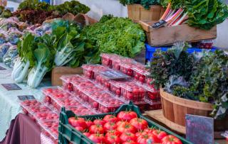 Photo 10-Pletcher Farm-Concord Farmers' Market June '20
